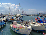 Israel, western Galilee, Acre, The ancient Harbour now a fishing port.