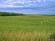 Mazurski krajobraz w okicach Mikołajek.