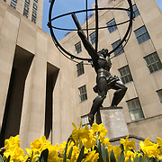 Statue of Atlas at Rockefeller Center