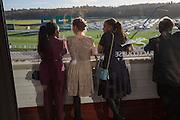 JENNIFER-JANE BENJAMIN; JEMMA ROACHE; DONNA MCCONNELL, Hennessy Gold Cup, The Racecourse Newbury. 30 November 2013.