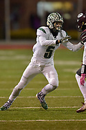 Elyria Catholic vs. Genoa varsity football on November 10, 2018. Image © David Richard and may not be copied, posted, published or printed without permission.