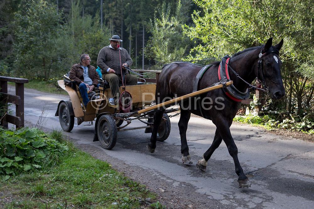 A horse and carriage take tourists along the road on Dolina Chocholowska, a hiking route in the Tatra National Park, on 17th September 2019, near Zakopane, Malopolska, Poland.