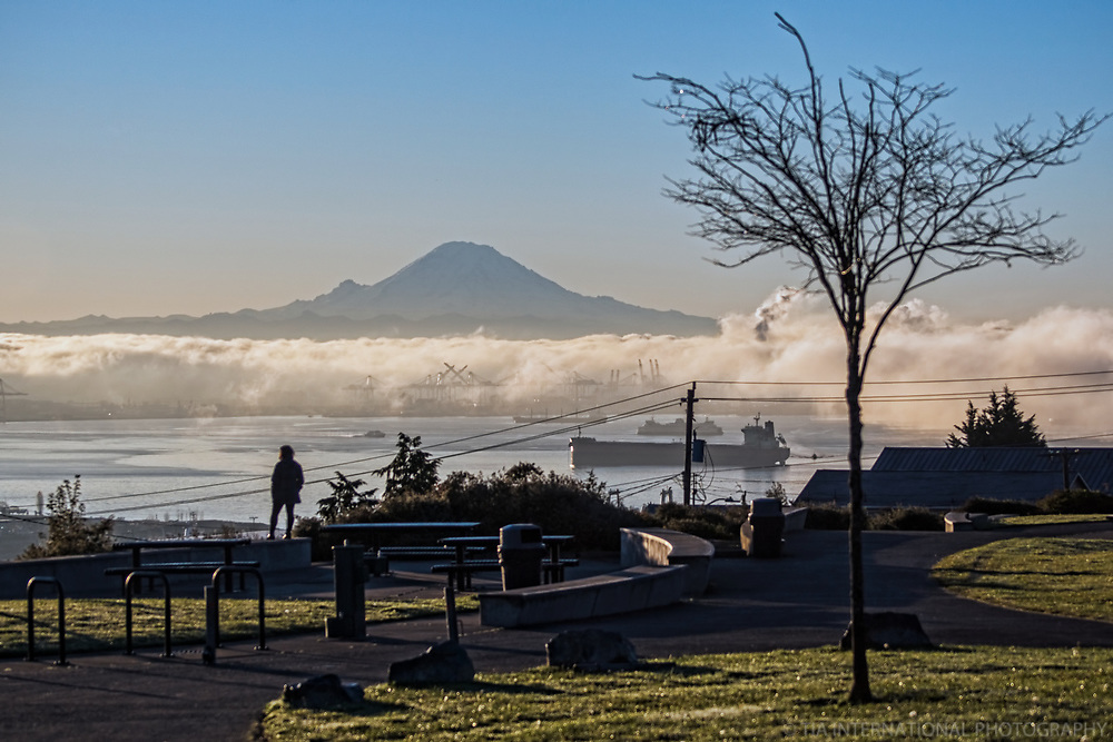 Elliott Bay in the Foggy Haze