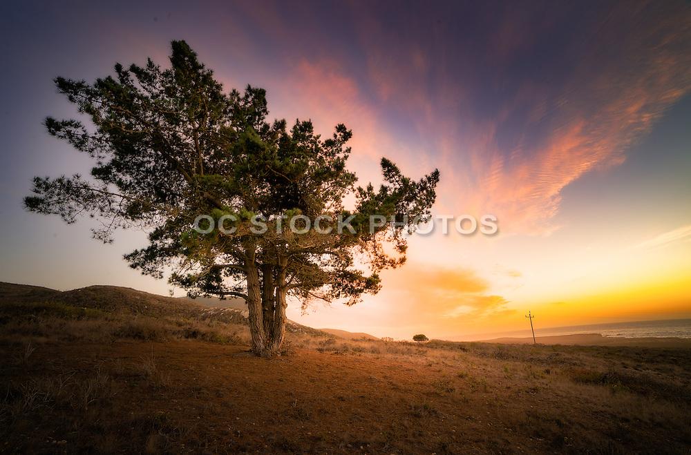 Montana de Oro State Park at Sunset