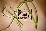 Slow Hand Farm CSA, Sauvie Island, Portland, Oregon.