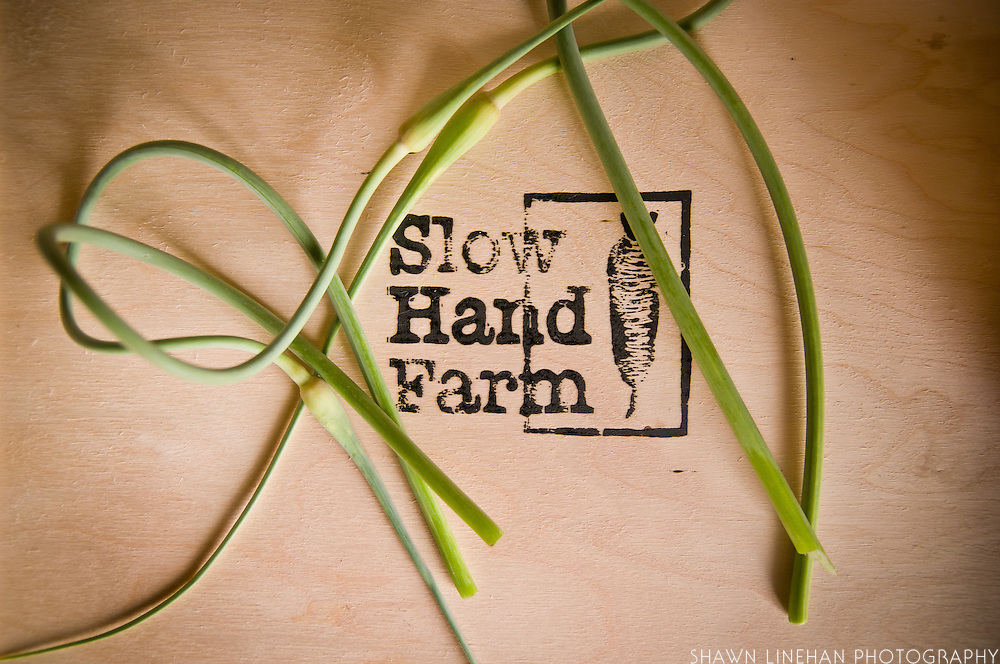 Slow Hand Farm CSA, Sauvie Island, Portland, Oregon.