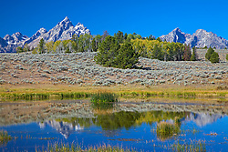 """Grand Tetons reflected into pond in Grand Teton National Park<br /> <br /> For production prints or stock photos click the Purchase Print/License Photo Button in upper Right; for Fine Art """"Custom Prints"""" contact Daryl - 208-709-3250 or dh@greater-yellowstone.com"""