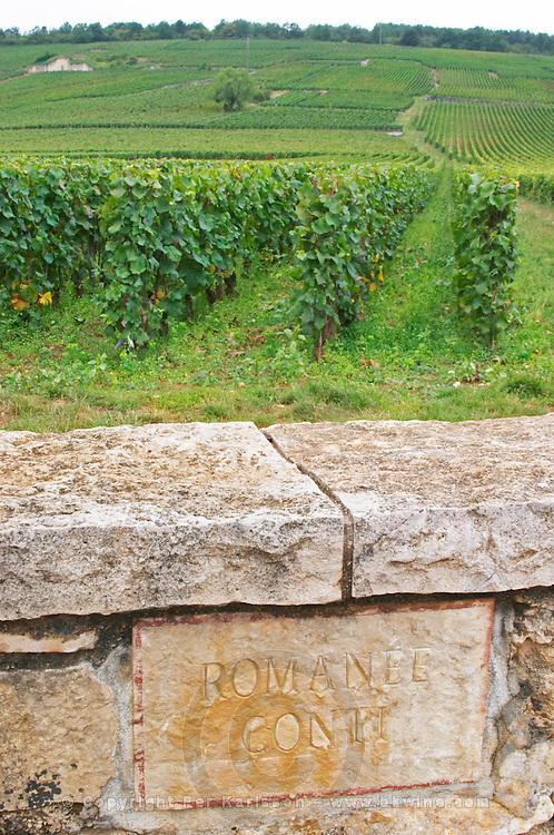 Vineyard. La Romanee Conti Grand Cru. Vosne Romanee, Cote de Nuits, d'Or, Burgundy, France