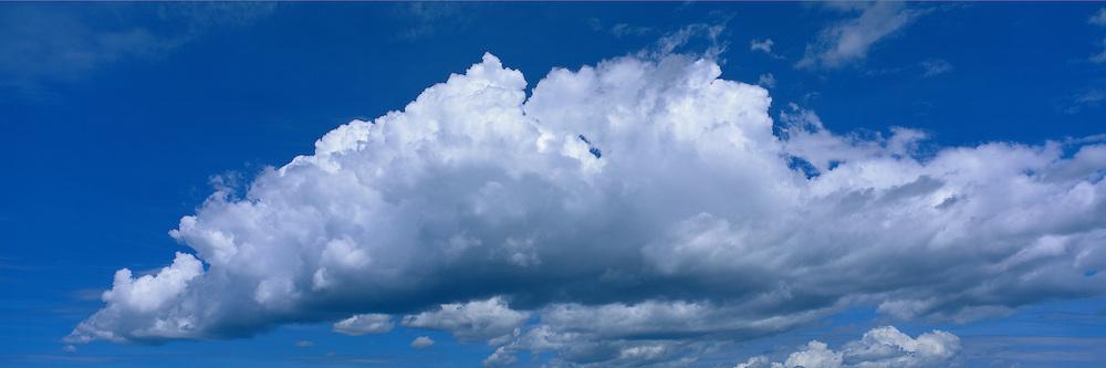 Cumulus cloud formation in a summer sky in Arizona