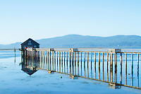 Scenic view of the town of Tillamook Bay, OR