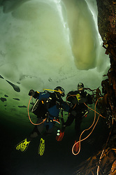 ice diving, ice diver with safty rope, scuba diver under ice, Russia, White Sea, MR