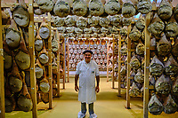 France, Pyrénées-Atlantiques (64), Pays-Basque, vallée des Aldudes, le Séchoir Collectif des Aldudes assure une prestation de séchage et l'affinage de jambons, Pierre Oteiza // France, Pyrénées-Atlantiques (64), Basque Country, Aldudes valley, the Collective Dryer of Aldudes provides a service for drying and refining hams