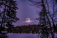 Amid the cold and deep snows of midwinter, the wolf packs howled hungrily outside first nation villages. Thus, the name for January's full Moon