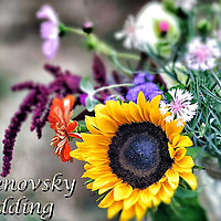 7.20.2012 Khrenovsky Wedding