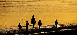 a family stroll along the beach on the Cromarty Firth at Sunset.<br /> <br /> (c) Andrew Wilson   Edinburgh Elite media
