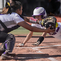 Miyamura Patriot catcher Cassandra Esquibel (17) makes the catch to tag out Kirtland Central Bronco Tiana Aspaas (8) out a home Tuesday at Ford Canyon Park.