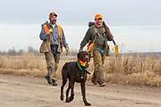 John Zeman (left) and Bob St. Pierre, along with Zeman's German Shorthair, Willy, hunt pheasants on a Minnesota public hunting area.