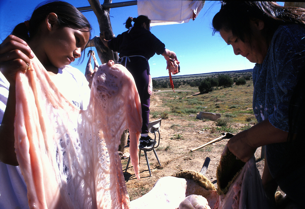 Butchering -  Ten year-old Dellarina Shorty helps her mother Laverna Shorty and Lita Paddock butcher a sheep.  For centuries, livestock has been at the center of ANavajo life, providing food, barter and wool for weaving.