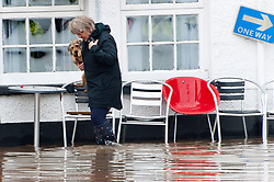 © Licensed to London News Pictures. 26/10/2019. Crickhowell, Powys, Wales, UK. A woman carries a dog through flood water in Bridge St Cickhowell in Powys  as rain falls relentlessly and the level of the river Usk rises dramatically. Water enters The Bridge End Inn basement in Bridge Street, Crickhowell  in Powys. Photo credit: Graham M. Lawrence/LNP