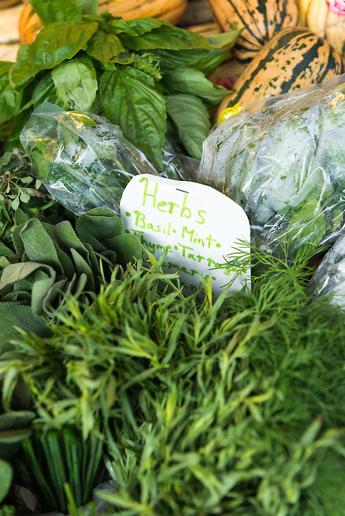Bunches of fresh herbs at Pike Place Market