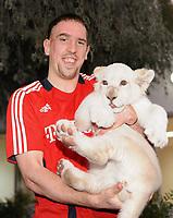 Fotball<br /> Tyskland<br /> Foto: Witters/Digitalsport<br /> NORWAY ONLY<br /> <br /> 04.01.2009<br /> <br /> Franck Ribery mit einem weissen Loewenbaby im Privatzoo des Scheichs<br /> <br /> Fussball Trainingslager FC Bayern München in Dubai