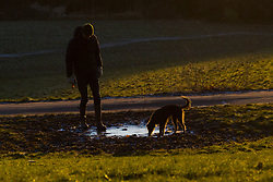 """A man and his dog examine a frozen puddle. The threatened snow from """"The Beast From The East"""" weather system doesn't materialise overnight in London leaving a crisp, clear morning, seen from Hampstead Heath in North London. London, February 27 2018."""