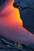 Fresh pahoehoe oozes from beneath the fractured crust of the leading edge of a flow, consuming all in its path...
