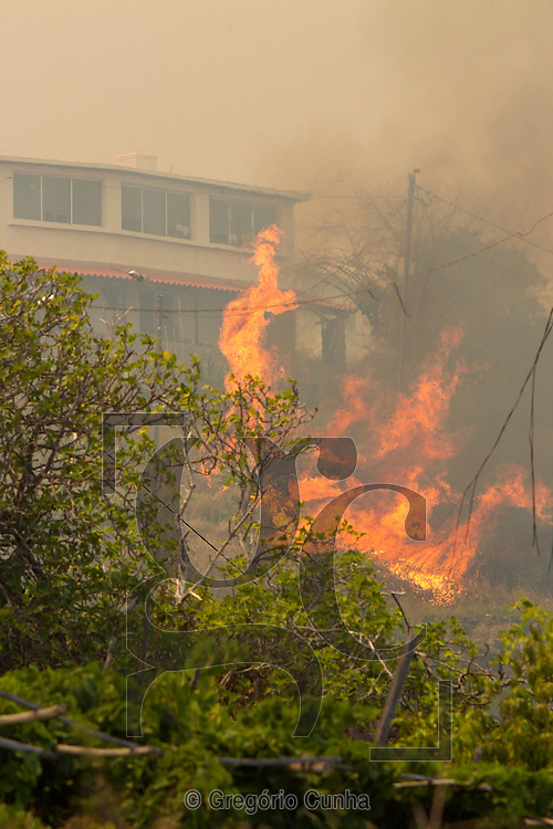 PORTUGAL, Gaula : Wildfire rages near the houses in Gaula, Santa Cruz, on July 19, 2012. Madeira island is undergoing a wave of fires that led to the fire emergency plan and evacuation of population in certain regions of the island. To help combat the fires a contingent of firefighters was sent this morning on a C130 plane from mainland Portugal.  PHOTO/ GREGORIO CUNHA
