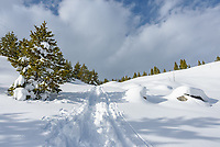 While snowshoeing in the Tetons I ended up following a trail that wasn't on the map, but it seemed more obvious than the main trail. As I approached the Taggart Lake Trailhead I was glad I was going down this steep hill and not up.