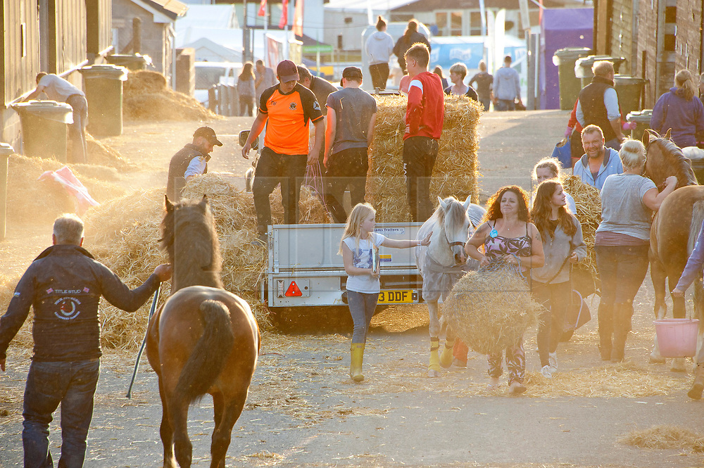 © Licensed to London News Pictures. 23/07/2017. Llanelwedd, UK. Contestants get ready for the show in the stable area on the eve of the Royal Welsh Show. The Royal Welsh Agricultural Show is hailed as the largest & most prestigious event of its kind in Europe. In excess of 200,000 visitors are expected this week over the four day show period. The first ever show was at Aberystwyth in 1904 and attracted 442 livestock entries. Photo credit: Graham M. Lawrence/LNP