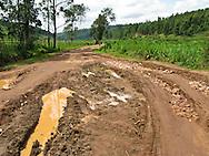 Farm land in southern Rwanda near Butare (Huye).