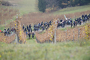 Nov. 11, 2015 - Wegscheid, Bavaria, Germany - GERMANY, Bavaria, Wegscheid; <br /> <br /> Changing tactics, as pro-refugee supporters run from police cordons along their route and take to the hills and farmland.  Left wing rally in support of a pro-refugee, no borders policy as it makes its way from Spielfeld railway station up into the surrounding vineyards and mountain villages to encounter an opposing Right wing rally. The group is a loose co-ordination of Antifas and a local district anti-fascist group, comprised mainly of students and many others.  This alpine region lies on the border of the Slovenian town of Sentilj where a vast refugee processing centre has led to raised tensions around the issue.<br /> ©Exclusivepix Media