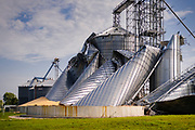 "12 AUGUST 2020 - MADRID, IOWA: Grain silos at the Heartland Cooperative in Luther were destroyed during the storm Monday. According to Iowa Governor Kim Reynolds, the storm damaged 10 million acres of corn and soybeans in Iowa, about 1 one-third of Iowa's 32 million acres of agricultural land. Justin Glisan, Iowa's state meteorologist, said the storm Monday, Aug. 10, lasted 14 hours and traveled 770 miles through the Midwest before losing strength in Ohio. The storm was a seldom seen ""derecho"" that packed straight line winds of nearly 100MPH. The storm pummelled Midwestern states from Nebraska to Ohio.    PHOTO BY JACK KURTZ"