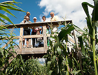 Brian, Ty,  June, Drew, Jennifer and Bruce Anderson use the vantage point from one of bridges within the Beans and Greens corn maze to help determine which direction they should go as they work their way through on Sunday afternoon.  (Karen Bobotas/for the Laconia Daily Sun)