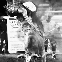 Ethan Lemmons fights to stay on his bull while competing in the bull riding even of the Sisters Rodeo on Friday, June 8, 2018.