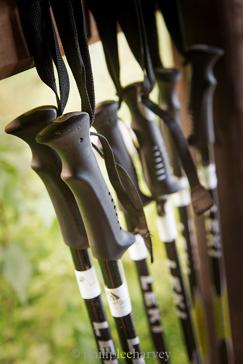 Close-up shot of hiking poles, Routeburn Track, South Island, New Zealand