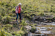 A nervous-looking woman treads carefully between slippery rocks and back on to a boggy section of footpath in Snowdonia National Park, on 6th October 2021, in Capel Curig, Snowdonia National Park, Wales.