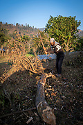 An elderly man chopping up a tree with an axe for firewood in the morning sunshine, on the 3rd of March 2020 in  the village of Raniswara, Ghairung, Gorkha, Nepal.   (photo by Andrew Aitchison / In pictures via Getty Images)