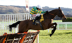 Charli Parcs ridden by Barry Geraghty clears the last flight before going on to win The JCB Triumph Trial Juvenile Hurdle Race run during Festival Trials Day at Cheltenham Racecourse.