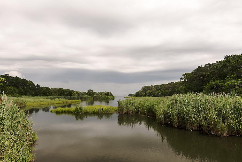 A River Runs Through It<br /> Riverhead, Long Island