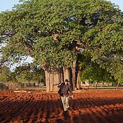 Venda cultural group. Hamakuya. Venda village in Limpopo Province, South Africa.