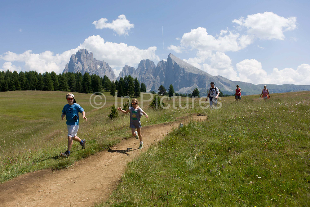 Hikers and their children on the Alpe di Siusi (German: Seiser Alm) plateau, above the South Tyrolean town of Ortisei-Sankt Ulrich in the Dolomites, Italy. Walking along one of the dozens of paths, these hikers enjoy panoramic views of the peaks that envelope the location.  The Alpe di Siusi is the biggest high-alpine pasture in Europe with a surface of 57 km² and its altitude range from 1680 to 2350 m above sea level. This high-alpine pasture is located in the heart of the Dolomites surrounded by the Sasso Lungo Mountain Group, the Sciliar Nature Park, and the Catinaccio Mountain Group, the Northern Alps and the Sciliar Mountain Massif with Santner Peak.