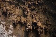 Januaria_MG, Brasil...O Parque Nacional Cavernas do Peruacu abriga mais de 140 cavernas, uma tribo indigena, os Xakriabas e mais de 80 sitios arqueologicos catalogados. ..Cavernas do Peruacu National Park, there are 140 caves and indigenous tribe, the Xakriaba and more than 80 archaeological sites cataloged. ..Foto: LEO DRUMOND / NITRO