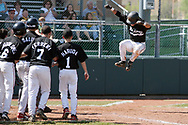 Hickory's David Schafer leaps onto home plate and into the arms of his teammates after hitting a go ahead grand slam in a playoff game against Blackhawk at Slippery Rock University's Jack Critchfield Park on June 2, 2008.