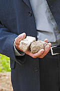 Alberic Mazoyer, then winemaker and director of Chapoutier in the vineyard Le Pavillon holding in his hand two stones typical for the soil in the Hermitage vineyards.  Domaine M Chapoutier, Tain l'Hermitage, Drome Drôme, France Europe