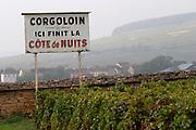 pinot noir vineyard corgoloin the end of cote de nuits clos des langres ardhuy nuits-st-georges cote de nuits burgundy france