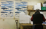 Whale Meat Shop at Tsukiji Fish Market, Tokyo. The meat on display includes endangered fin whale meat, recently controversially imported from Iceland...Tsukiji fish market is the biggest wholesale fish and seafood market in the world.