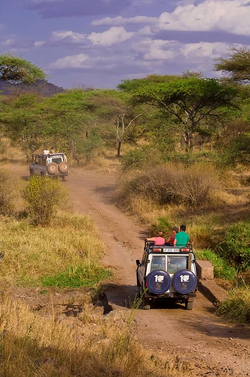 Safari vehicles touring Serengeti National Park, Tanzania