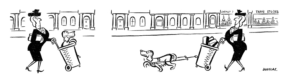 (A woman carries her dog in a shopping trolly but makes the dog pull it when it is full of shopping)