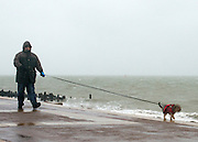 © Licensed to London News Pictures. 11/11/2014. Southsea, UK. A man walks his dog along the seafront.  Wet and windy weather today, 11 November 2014, at Southsea, Portsmouth. The Met Office have issued weather warnings in some parts of the UK. Photo credit : Stephen Simpson/LNP